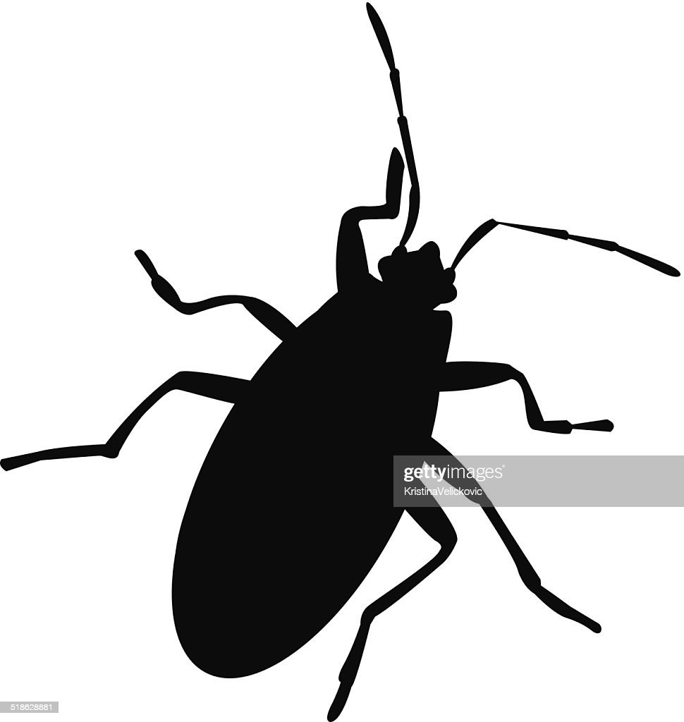 bug silhouette vector art getty images