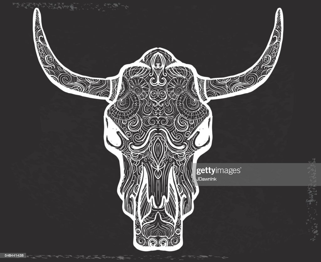 bull skull doodle drawing hand drawn on chalkboard texture vector