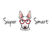 Bull Terrier dog in glasses - vector illustration isolated on white background