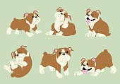 vector of bulldog cartoon set