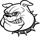 A vector illustration of a Bulldog Mascot Head.