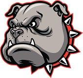 vector of bulldog head mascot