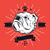 A bulldog mascot t-shirt design on a red background with banners and starburst shape