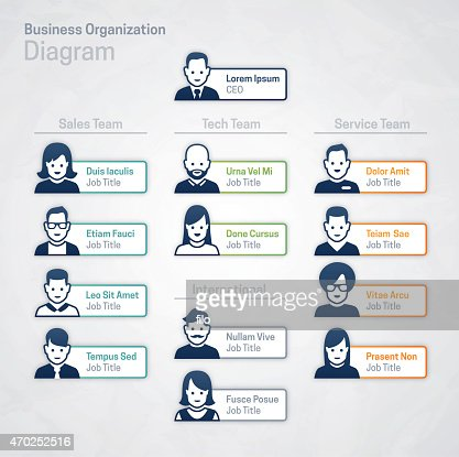 Business Corporate Organization Chart Vector Art | Getty Images