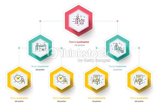 Business hierarchy organogram chart infographics corporate corporate organizational structure graphic elements company organization branches template modern vector info graphic tree layout design wajeb Images