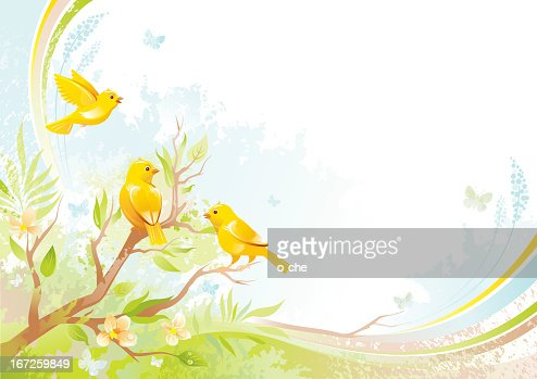 Butterfly and birds background with copyspace: canaries : Vector Art