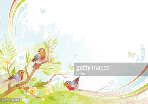 Butterfly and birds background with copyspace: robins : Vector Art
