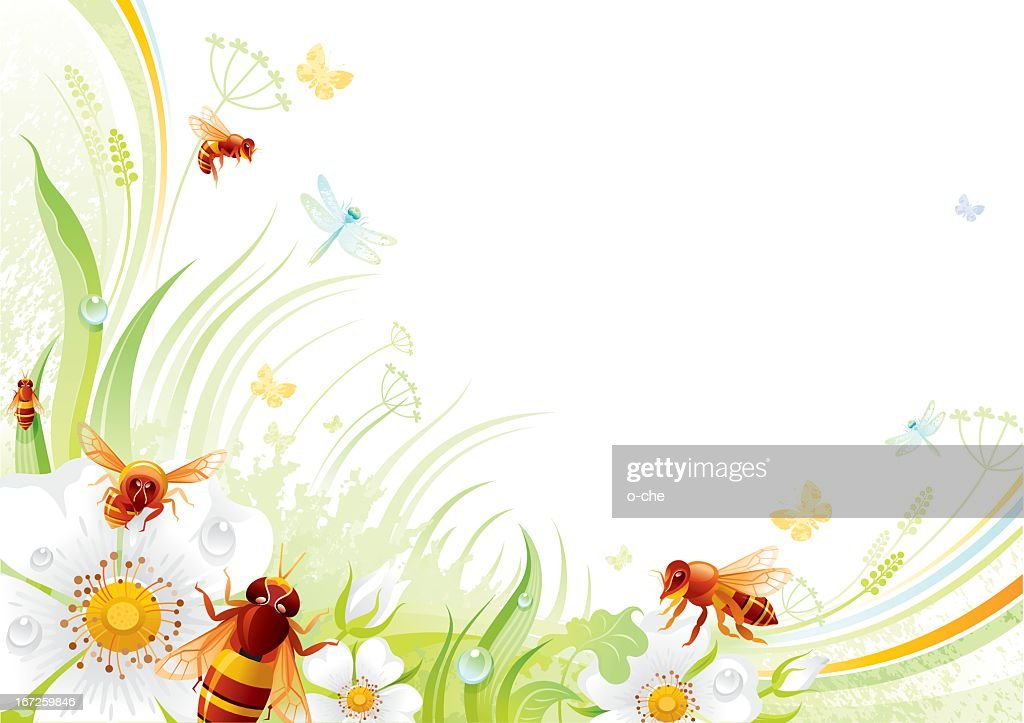 Butterfly background with copyspace: bees and wild roses : Vector Art