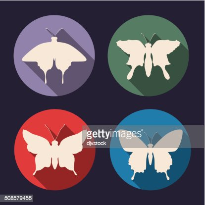 Butterfly design : Vector Art