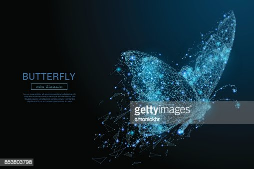 Butterfly low poly blue : stock vector