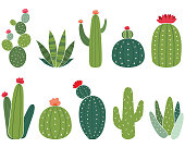 A vector illustration of Cactus Elements Set. Perfect for invitations, blog, web design, graphic design,embroidery, scrapbooking, scrapbook elements, papers, card making, stationery, paper crafts and