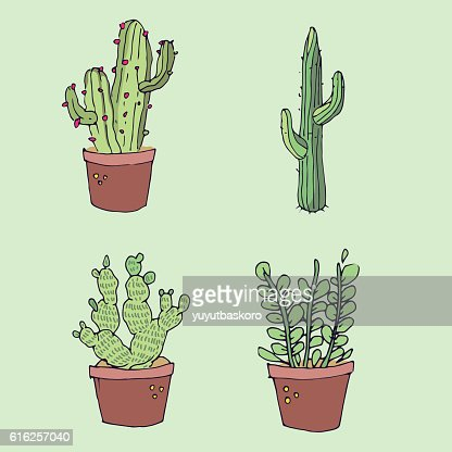 Cactus icon sets. Vector illustration : Vector Art