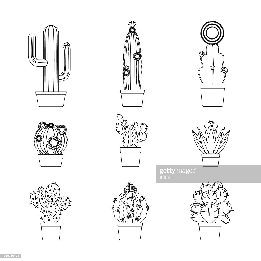 Cactus thin line icon set : Vector Art
