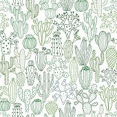 Cactus vector illustrations. Hand drawn cactus plants set isolated on white