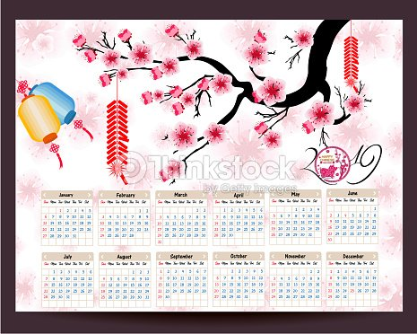 calendar 2019 chinese calendar for happy new year 2019 year of the pig vector