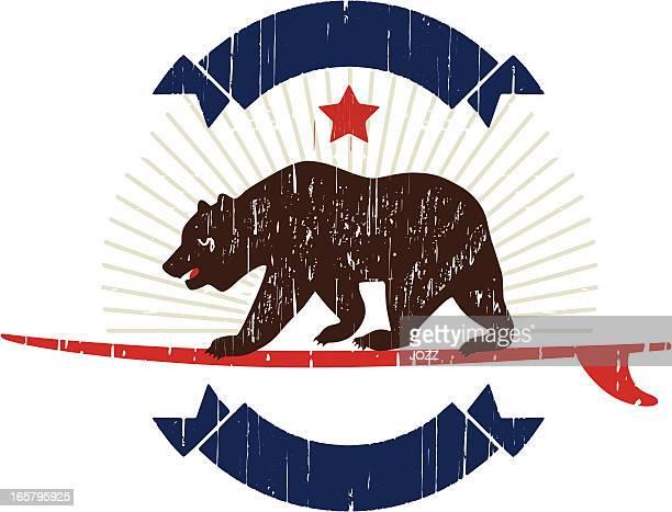 california bear surfing