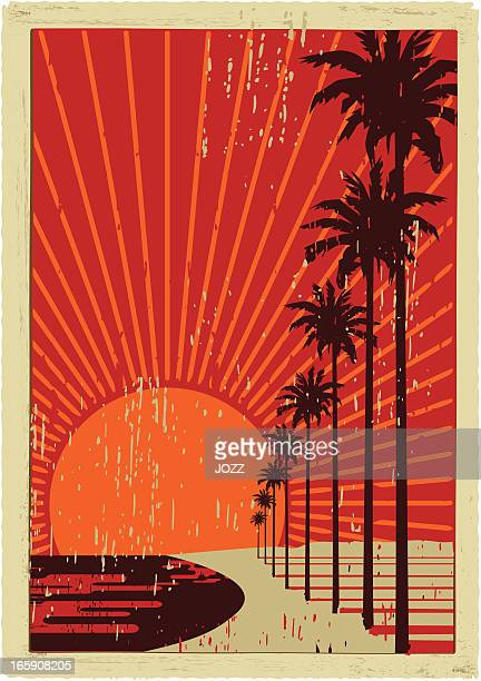 california vintage Surfen
