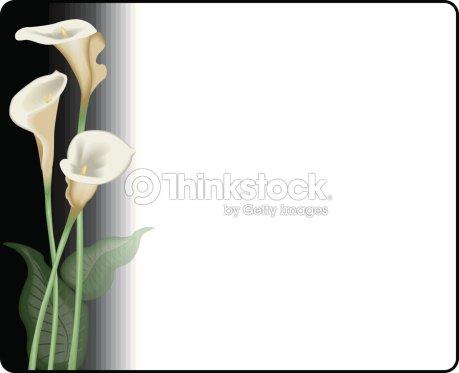 Calla Lilies Frame Vector Art   Thinkstock