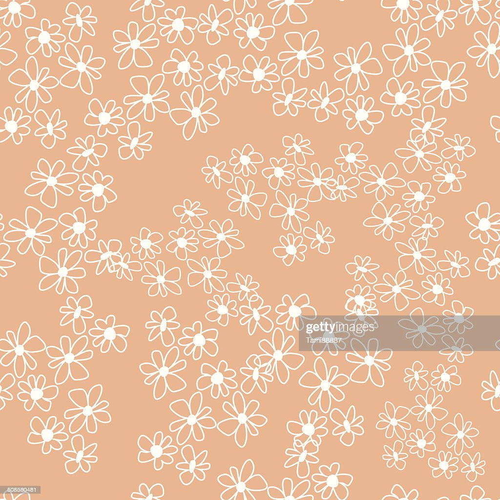 camomile : Vector Art