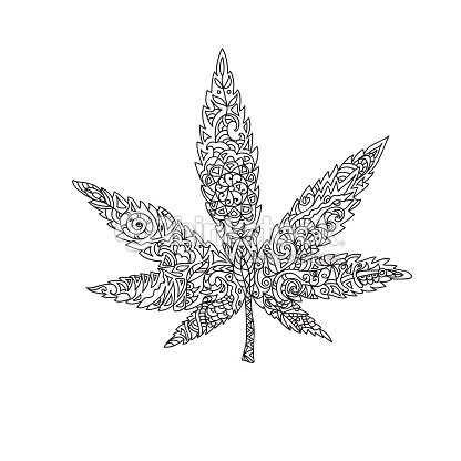 Feuille de cannabis zentangle clipart vectoriel thinkstock - Feuille cannabis dessin ...