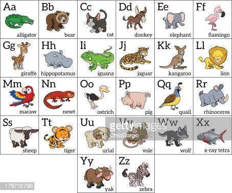 Tabla De Alfabeto Animales De Dibujos Animados Arte