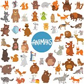 Cartoon Illustration of Wild Animal Characters Huge Set