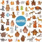 Cartoon Illustration of Wild Animal Characters Huge Set