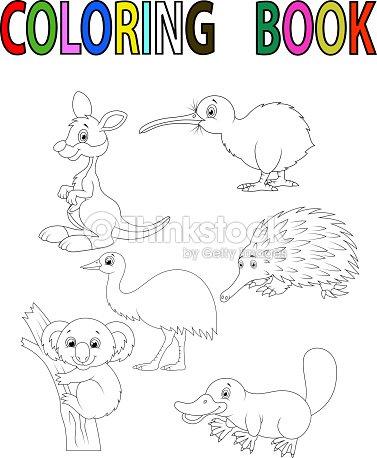 Libro Para Colorear Con Animales De Dibujos Animados De Australia ...
