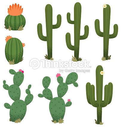 Cartoon Cacti stock vector - Thinkstock