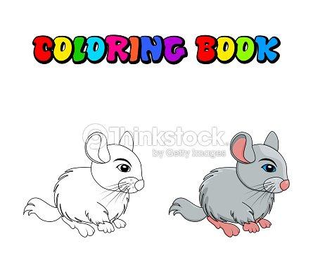 Chinchilla De Dibujos Animados Para Colorear Libro Aislado Sobre ...