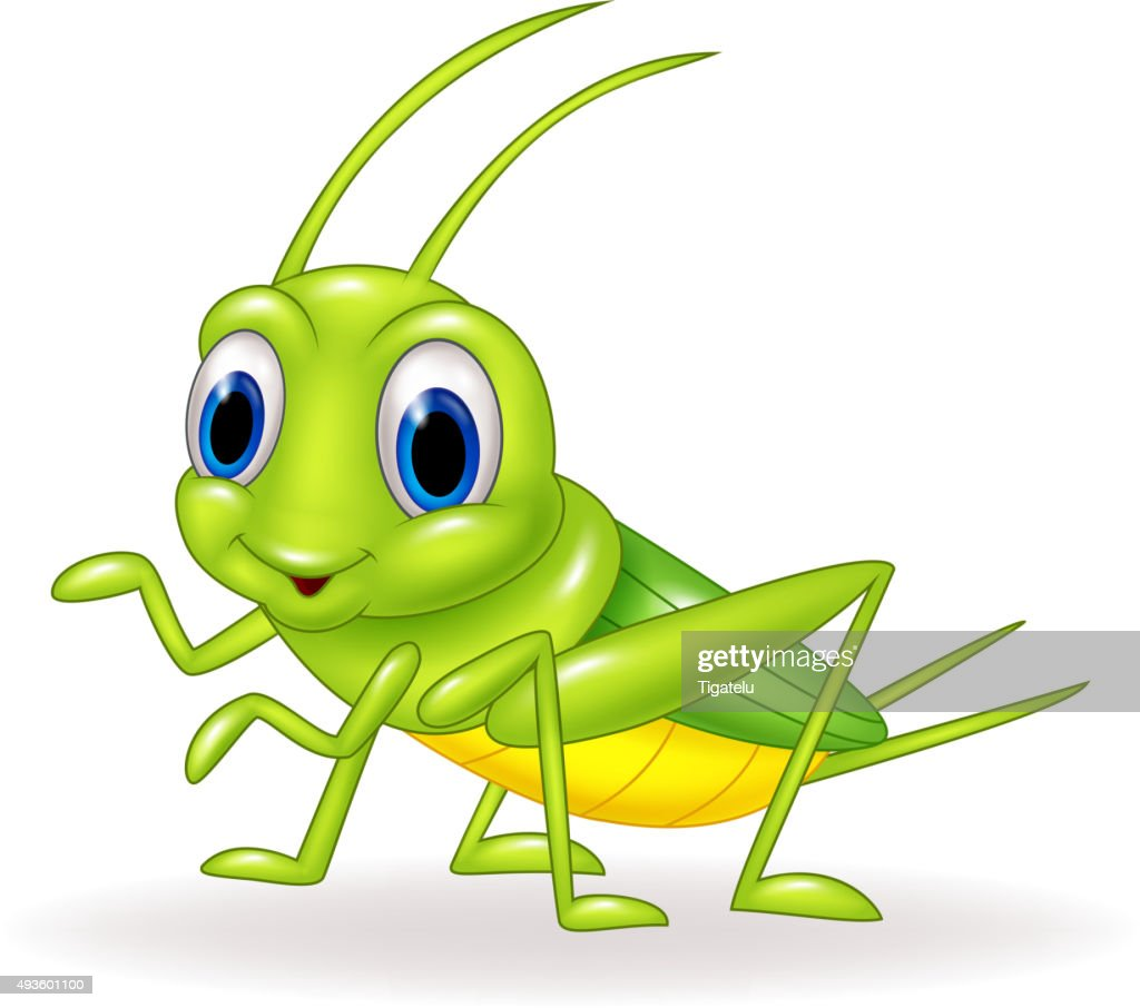 Cartoon cute green cricket isolated on white background vector id493601100
