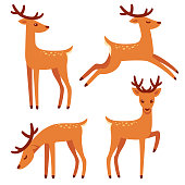 Cute deer with antlers, vector illustration set. Standing, jumping and grazing. Cartoon style drawing.
