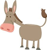Cartoon Illustration of Cute Donkey Farm Animal