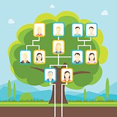 Cartoon Green Family Tree with Photo Concept of Genealogical History Flat Design Style. Vector illustration