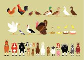 Cute Cartoon Farm Animal Characters including Birds (Hen, Rooster, Brown Quails, Mallard Ducks, Domestic Ducks, Goose, Pigeon, Muscovy Duck, Turkey, also Baby and the eggs of Quail, Chicken, Duck, and