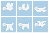 Cartoon flying dove sprite sheet. Vector illustration. Can be used for GIF animation