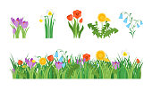 Cartoon Garden Flowers and Element Set Concept Flat Design Style Include of Grass, Plant and Leaf. Vector illustration