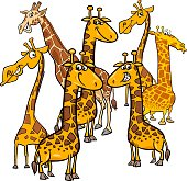 Cartoon Illustration of Funny Giraffes Animal Characters Group