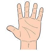 vector of cartoon hand