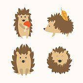 Cartoon Cute Hedgehog Set. Flat Design Style. Different Types. Vector illustration