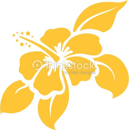 A Cartoon Illustration Of A Hibiscus Flower On White Vector Stock