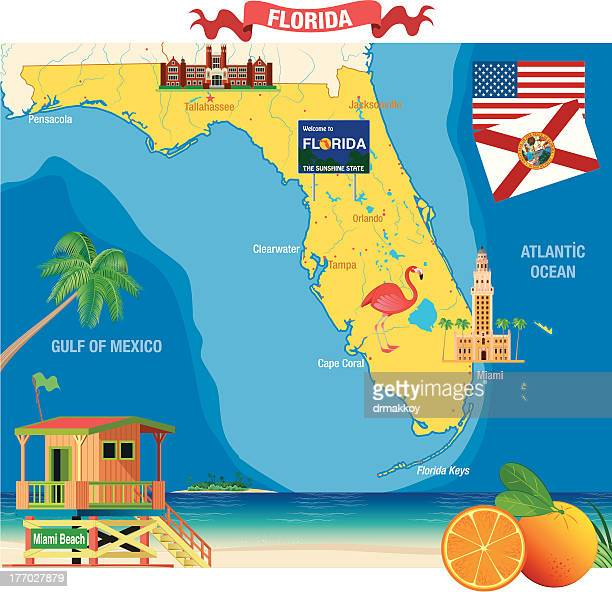 Orlando Florida Vector Art And Graphics | Getty Images