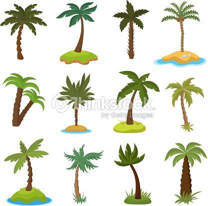 Dibujos Animados De Palmeras En El Conjunto De Vectores Tropicales