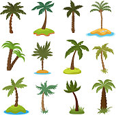 Cartoon palm trees on tropical exotic islands vector set. Illustration of island with green palm collection