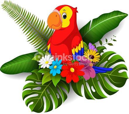 Loro De Dibujos Animados Con Flores Tropicales Y Fondo De Licencia