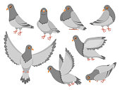 Cartoon pigeon. City dove bird, flying pigeons and town birds doves. Wild or domestic gray fly or standing dove birds. Birdie isolated vector illustration icons set