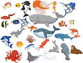 Illustration of Cartoon sea animals isolated on white background
