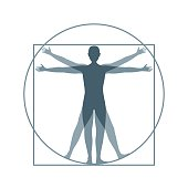 Cartoon Silhouette Vitruvian Man Proportion, Human Anatomy. Flat Design Style. Vector illustration