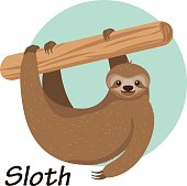 Cartoon sloth hanging on a branch vector illustration.