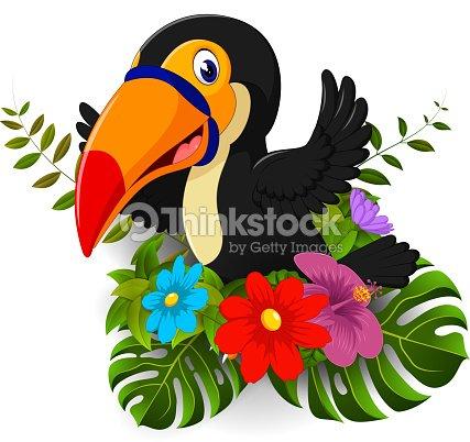 Tucan De Dibujos Animados Con Flores Tropicales Y Fondo De Licencia